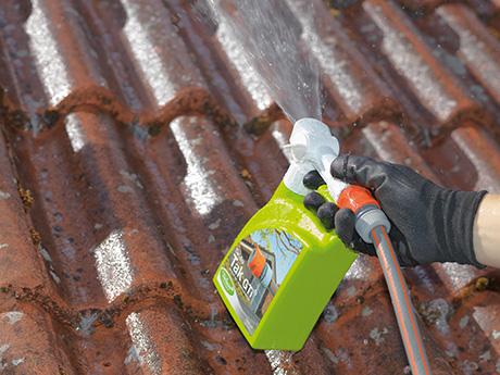 Rengöring av takpannor